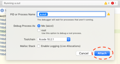 Screenshot of debugging attachment dialogue.